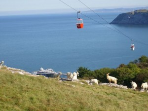 Photo - Cable Cars